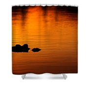 Alligator Dusk Shower Curtain