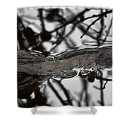 Alligator Eye Shower Curtain