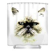 'allo Kitty Shower Curtain