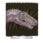 Allosaurus Shower Curtain