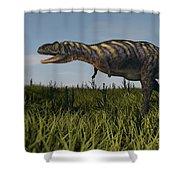 Alluring Aucasaurus In Grassland Shower Curtain
