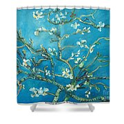 Almond Blossom Branches Print Shower Curtain