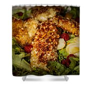 Almond Encrusted Chicken Salad 2 Shower Curtain