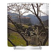 Almond Tree And Monastery   #9815 Shower Curtain