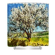 Almond Tree Shower Curtain