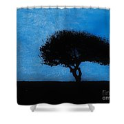 Almost Dark Shower Curtain