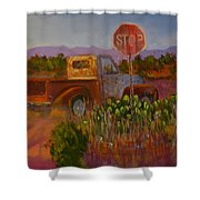 Almost Home - Art By Bill Tomsa Shower Curtain