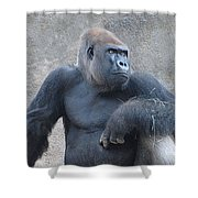 Almost Human Shower Curtain