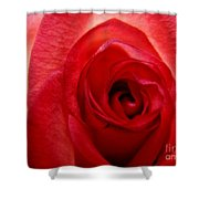 Almost Red Shower Curtain
