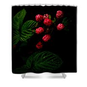 Almost Ripe Shower Curtain