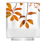 Almost Time Shower Curtain