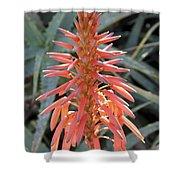 Aloe Vera Flower Shower Curtain