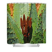 Aloe Vera's New Buds Shower Curtain