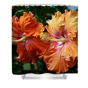 Aloha Keanae Tropical Hibiscus Shower Curtain