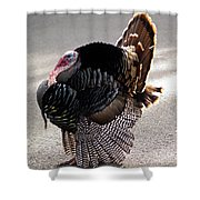 Aloha Turkey II Shower Curtain