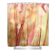 Alone Shower Curtain by Anne Gilbert