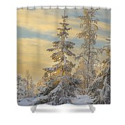 Alone But Strong Shower Curtain
