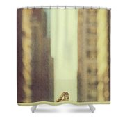 Alone In A Big City Shower Curtain