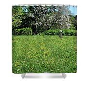 Alone In A Field Of Buttercups Shower Curtain