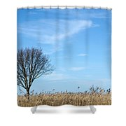 Alone Tree In The Reeds Shower Curtain
