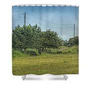 Along A Rural Road Shower Curtain