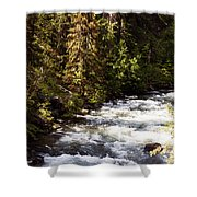 Along American River Shower Curtain
