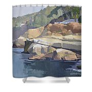 Along Coast Walk In La Jolla, San Diego, California Shower Curtain