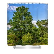 Along The Path 2 Shower Curtain