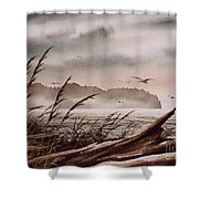 Along The Wild Shore Shower Curtain