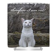 Aloof Cat Shower Curtain