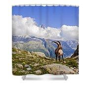Alpine Ibex Shower Curtain