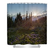 Alpine Meadow Sunrays Shower Curtain