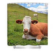 Alpine Pasture With Cow Shower Curtain