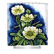 Alpine Ranunculus Shower Curtain by Zaira Dzhaubaeva