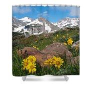 Alpine Sunflower Mountain Landscape Shower Curtain
