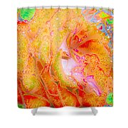 Altered States 90441 Shower Curtain