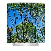 Alternate Reality - Reflected View Of The Forest From A Pond In Garland Ranch Park In Carmel Valley. Shower Curtain