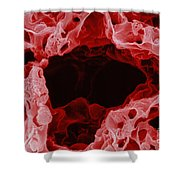 Alveolus In Lung Shower Curtain
