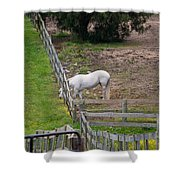Always Greener On The Other Side Shower Curtain