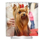 Am I Beautiful? Shower Curtain