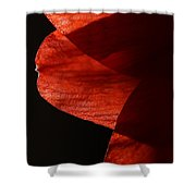 Amaryllis Abstract Shower Curtain