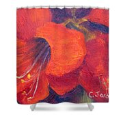 Amaryllis Flower Shower Curtain