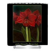 Amaryllis Flower Holiday Card Shower Curtain