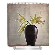 Amaryllis Vintage Shower Curtain