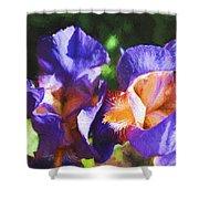 Amazing Iris Shower Curtain