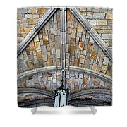 Amazing Rock Shower Curtain