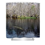 Reflections - On The - Silver River Shower Curtain