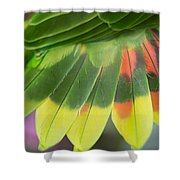 Amazon Parrots Feathers Abstract Shower Curtain