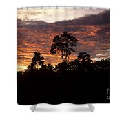 Amazon Sunset Shower Curtain