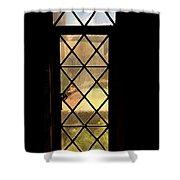 Amber Feelings Shower Curtain